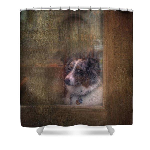 Old Bonnie Dog Shower Curtain
