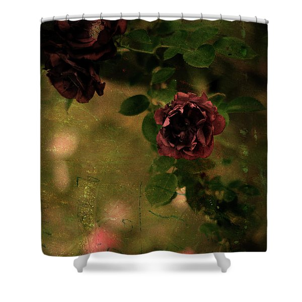 Old Roses Shower Curtain
