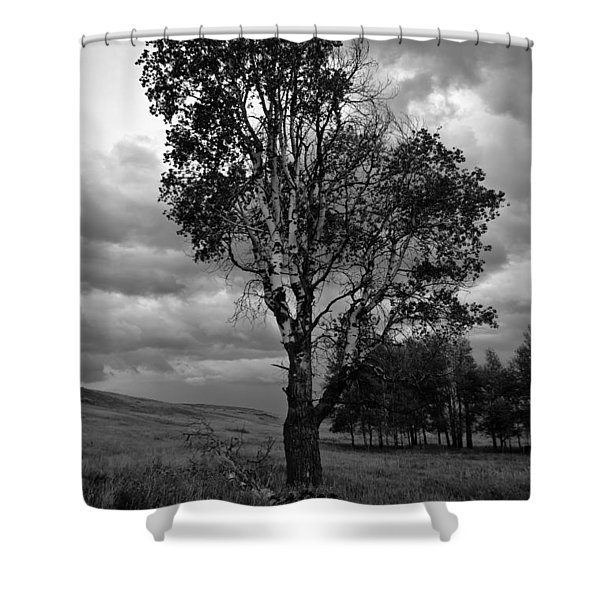 Old Tree, Lost Trail Wildlife Refuge Shower Curtain