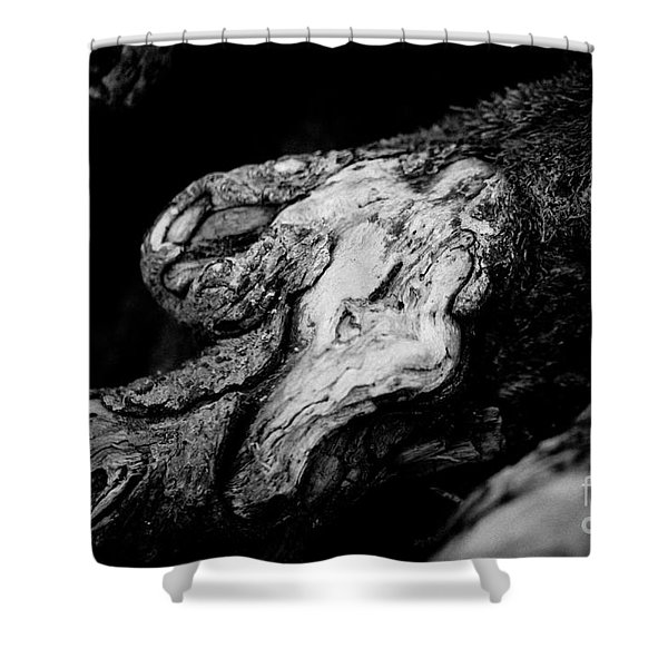 Shower Curtain featuring the photograph Old Wood Abstract Vintage Background  Artmif by Raimond Klavins