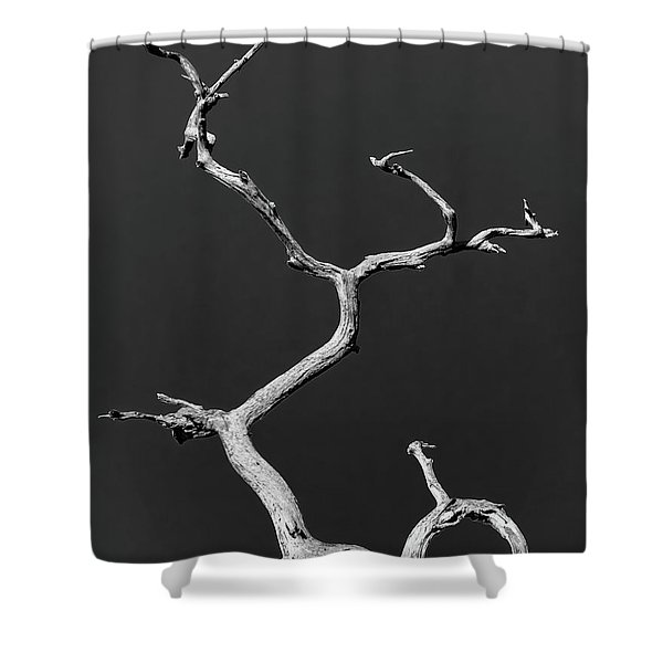 Old Wood I Shower Curtain
