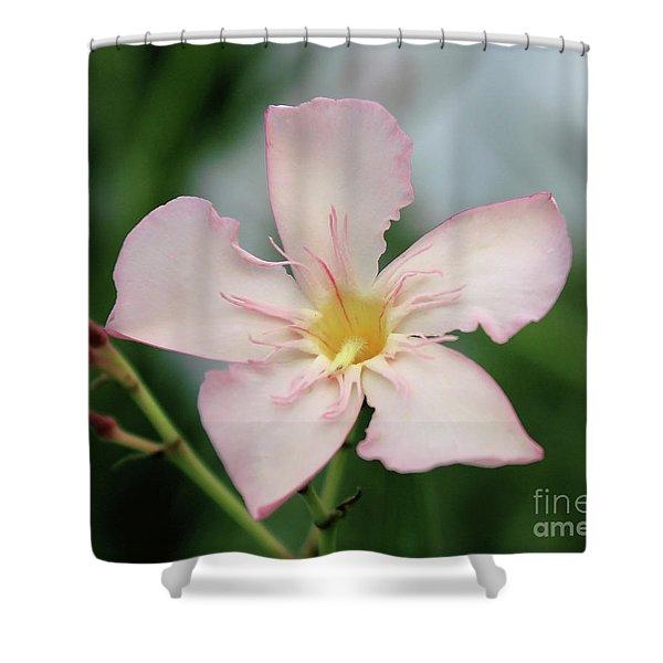Oleander Agnes Campbell  Shower Curtain