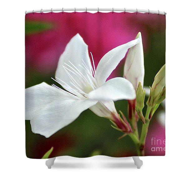 Oleander Casablanca 2 Shower Curtain