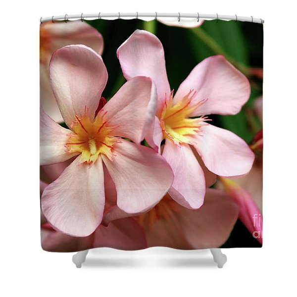 Oleander Dr. Ragioneri 2 Shower Curtain