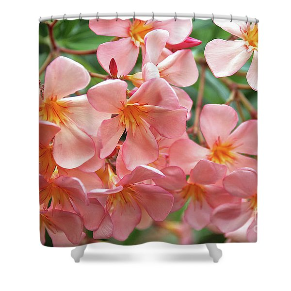 Oleander Dr. Ragioneri 5 Shower Curtain