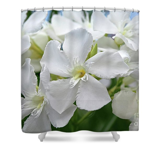 Oleander Ed Barr 3 Shower Curtain
