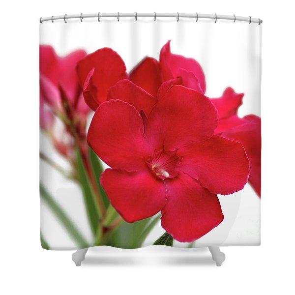 Oleander Emile Sahut 1 Shower Curtain