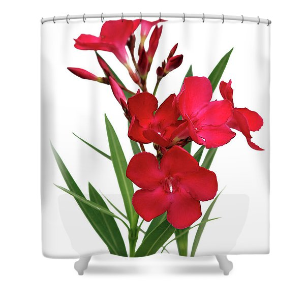 Oleander Emile Sahut 2 Shower Curtain