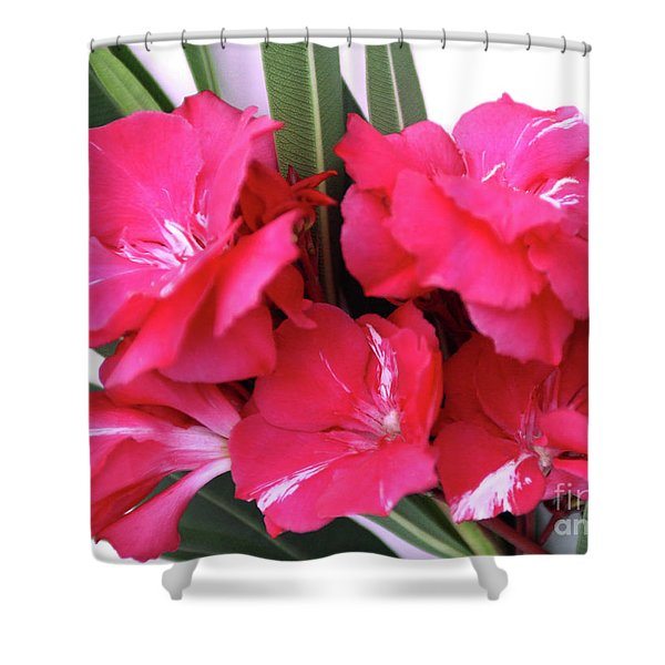 Oleander Geant Des Batailles 1 Shower Curtain