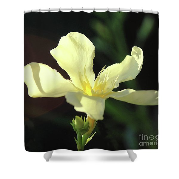 Oleander Marie Gambetta 1 Shower Curtain