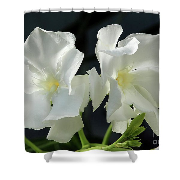 Oleander Mont Blanc 1 Shower Curtain