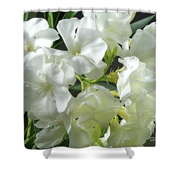 Oleander Mont Blanc 2 Shower Curtain