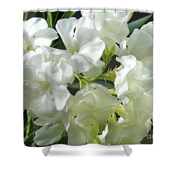 Oleander Mont Blanc 2 Shower Curtain