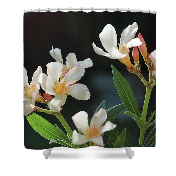 Oleander Petite Salmon 2 Shower Curtain