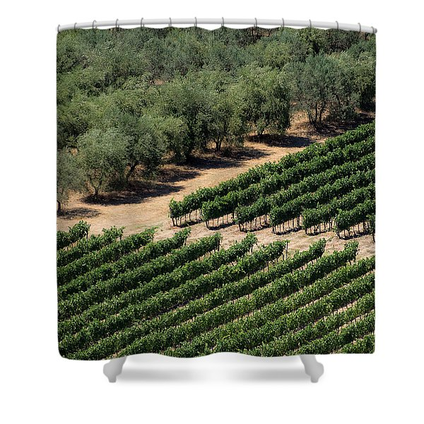 Olive Grove Meets Vineyard Shower Curtain