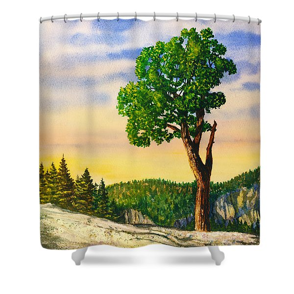 Olmsted Point Tree Shower Curtain