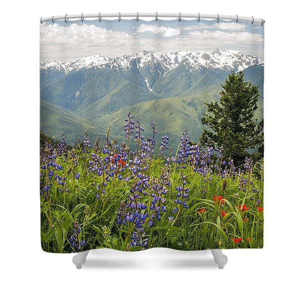 Olympic Mountain Wildflowers Shower Curtain
