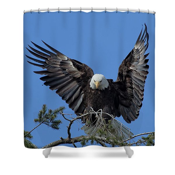 On Display Shower Curtain