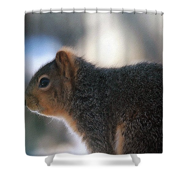 On The Deck Shower Curtain