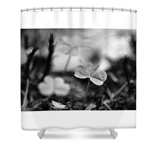On The Forest Floor  #monochrome Shower Curtain