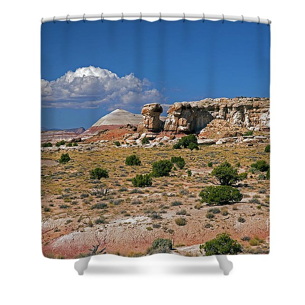 On The Road To Cathedral Valley  Shower Curtain