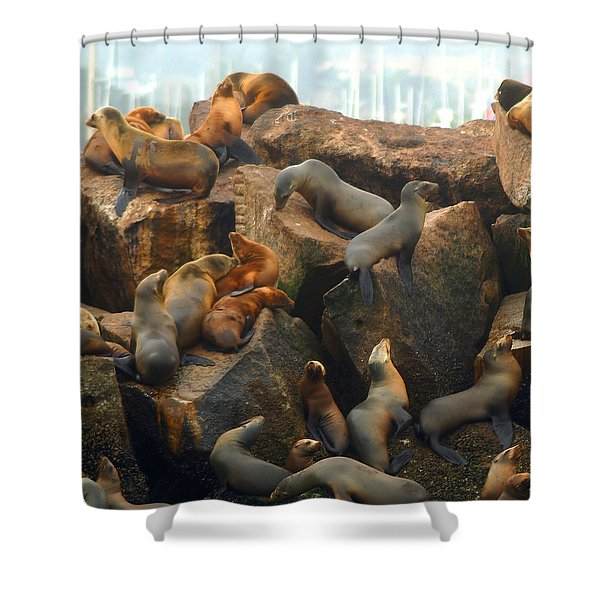 On The Rocks - Squared Shower Curtain