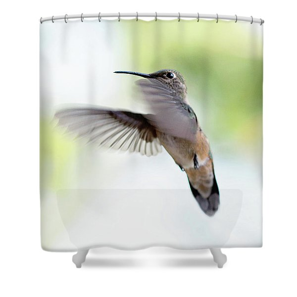 On The Wing 2 Shower Curtain
