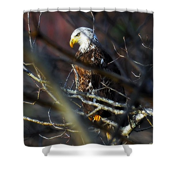 On Watch Shower Curtain