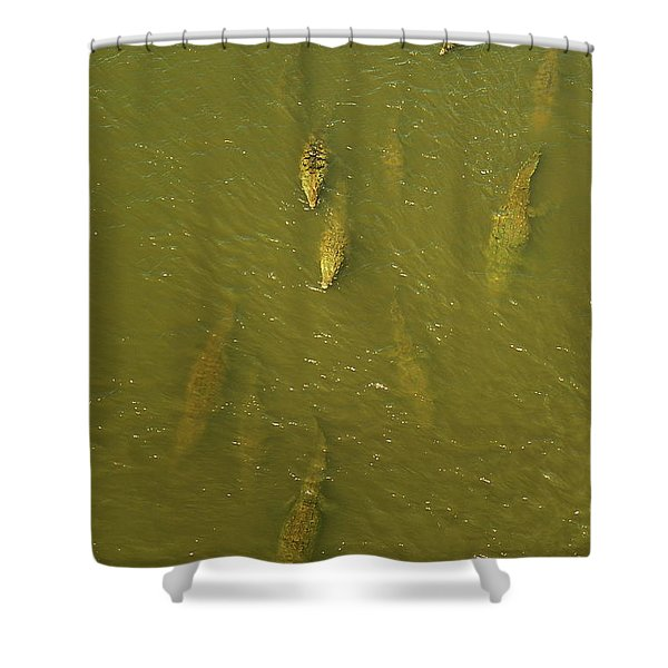 One Direction IIi Shower Curtain