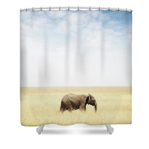 One Elephant Walking In Grass In Africa Shower Curtain