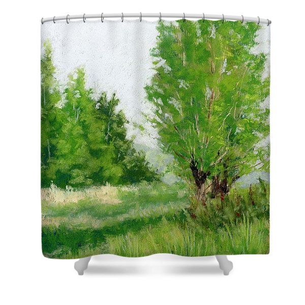 One Fine Spring Day Study Shower Curtain