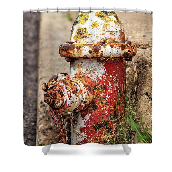 One Hydrant - Too Many Dogs Shower Curtain