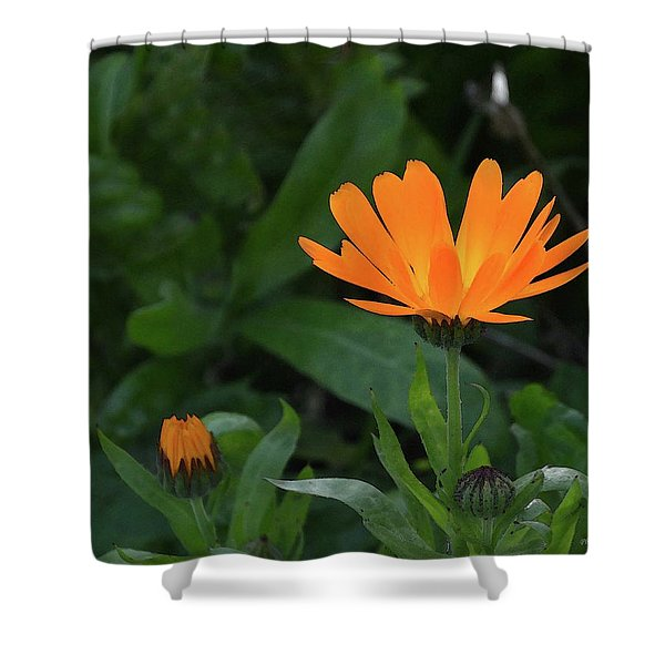One In Bloom Shower Curtain
