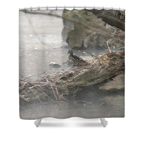 One Little Ducky Shower Curtain