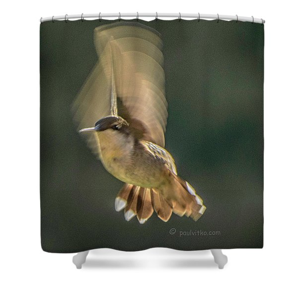 One_wing Shower Curtain