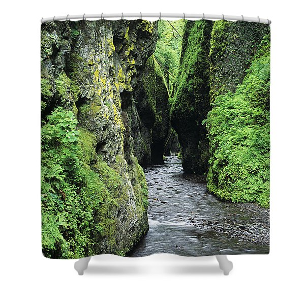 Oneonta Creek And Gorge Shower Curtain