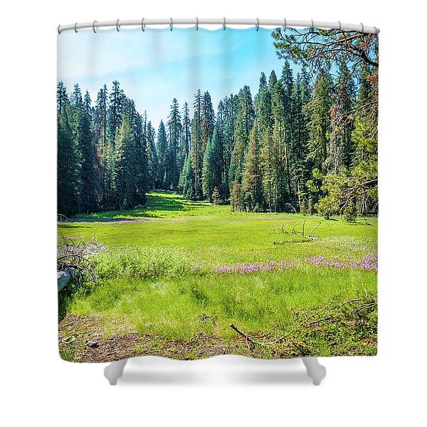 Open Meadow- Shower Curtain