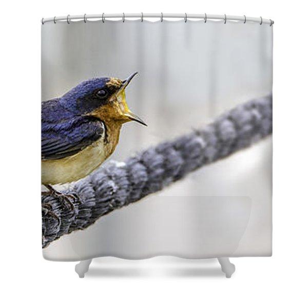 Oprah In The Marsh Shower Curtain