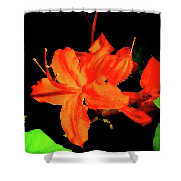 Shower Curtain featuring the photograph Flame Azalea by Meta Gatschenberger
