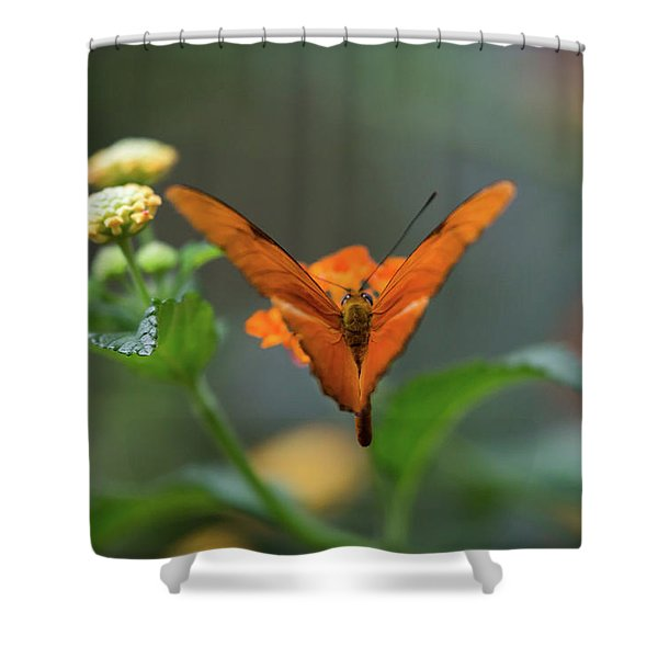 Orange Is The New Butterfly Shower Curtain