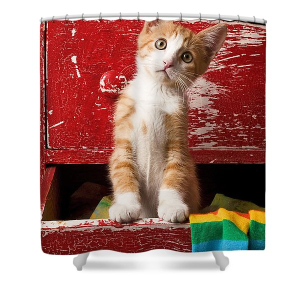 Orange Tabby Kitten In Red Drawer  Shower Curtain