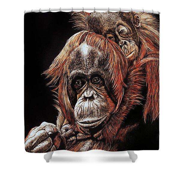 Orangutans Two Shower Curtain