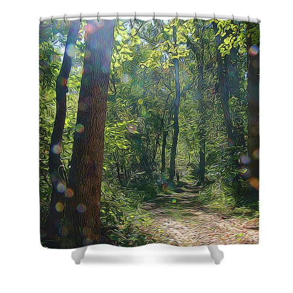 Orbs In The Woods Shower Curtain