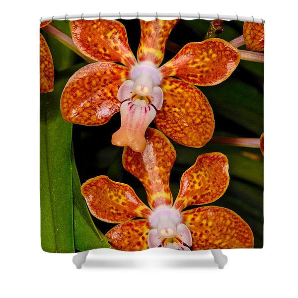Orchid 450 Shower Curtain