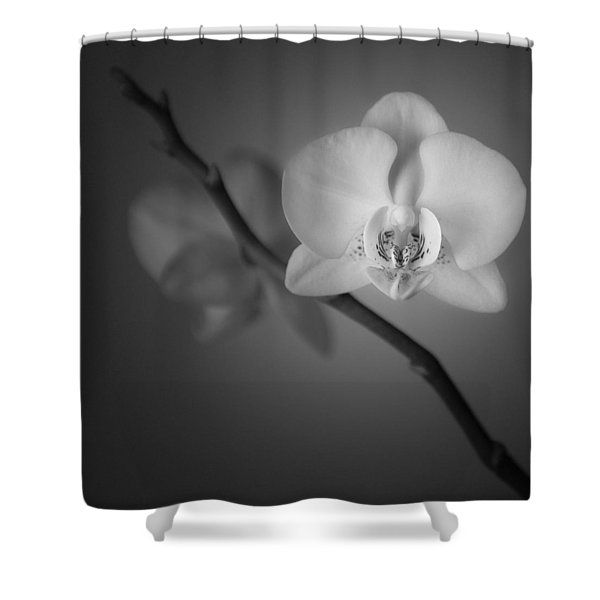 Orchid Flower Still Life Shower Curtain