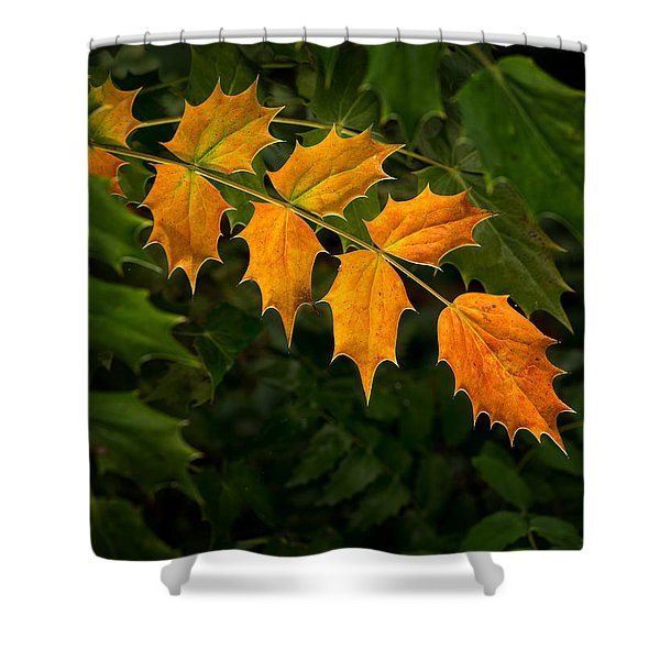 Shower Curtain featuring the photograph Oregon Grape Autumn by Mary Jo Allen
