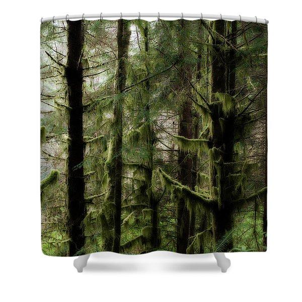 Oregon Old Growth Coastal Forest Shower Curtain