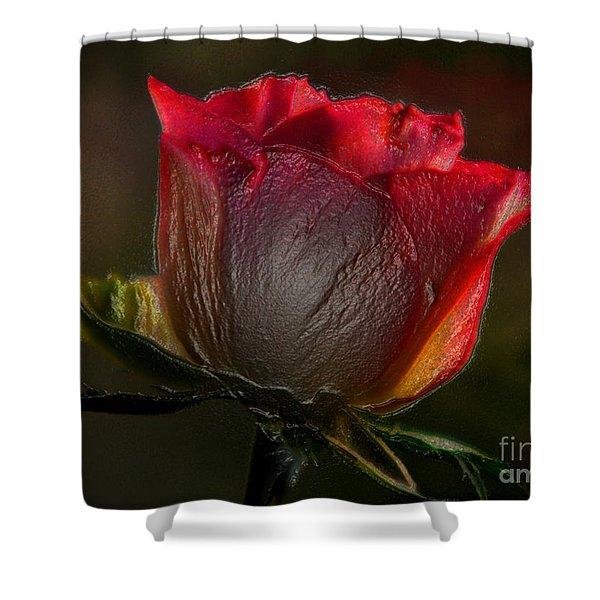 Organic Rose Shower Curtain