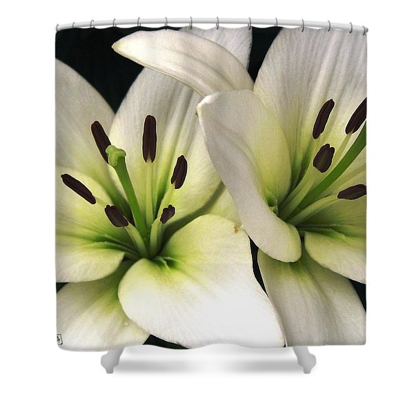 Oriental Lily Named Endless Love Shower Curtain