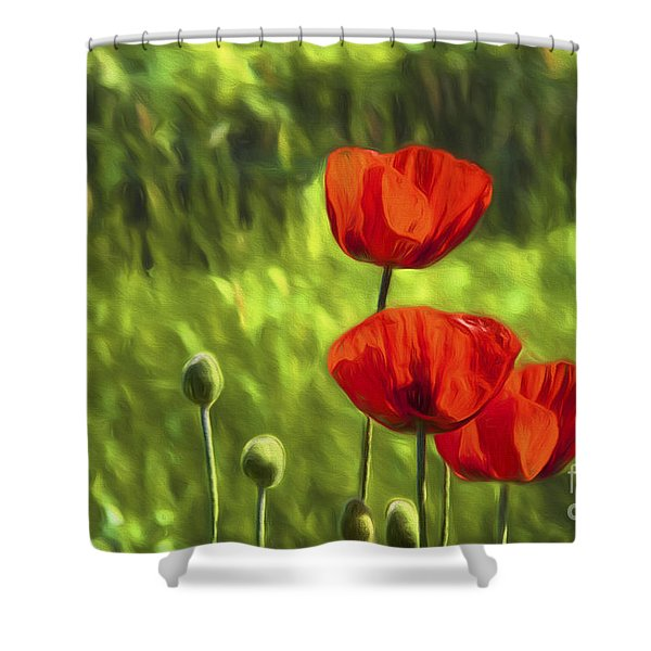 Oriental Poppies Shower Curtain